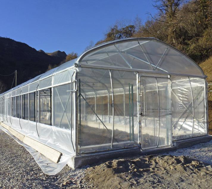 Irrigazione in campo pieno campo for Serre tunnel usate