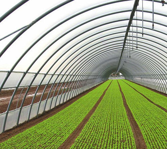 Idromeccanica lucchini serra tunnel agricolo for Serra bioclimatica prezzi