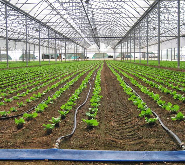 Idromeccanica lucchini impianti di climatizzazione e for Irrigazione serra