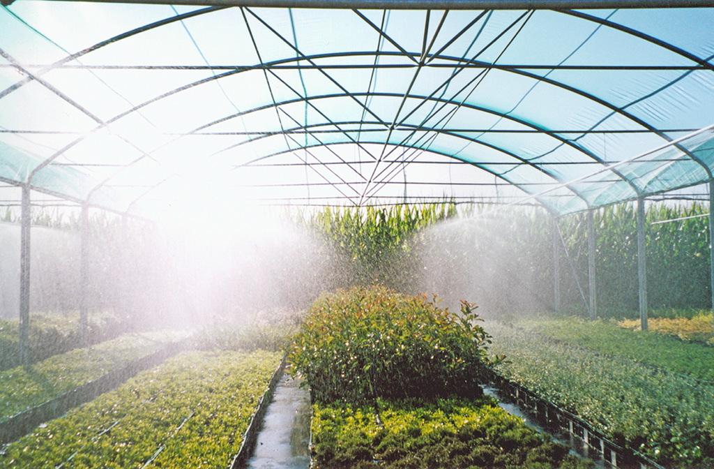 irrigazione nebulizzazione irrigazione interno serra